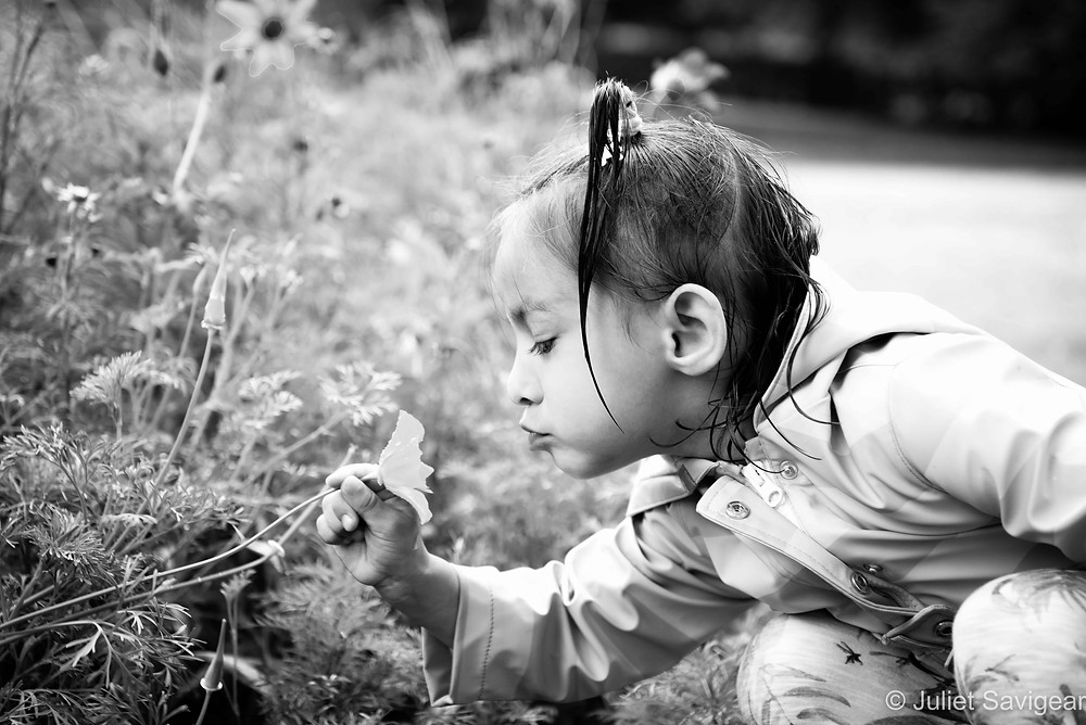 Sniff! Children's Photography, Chiswick