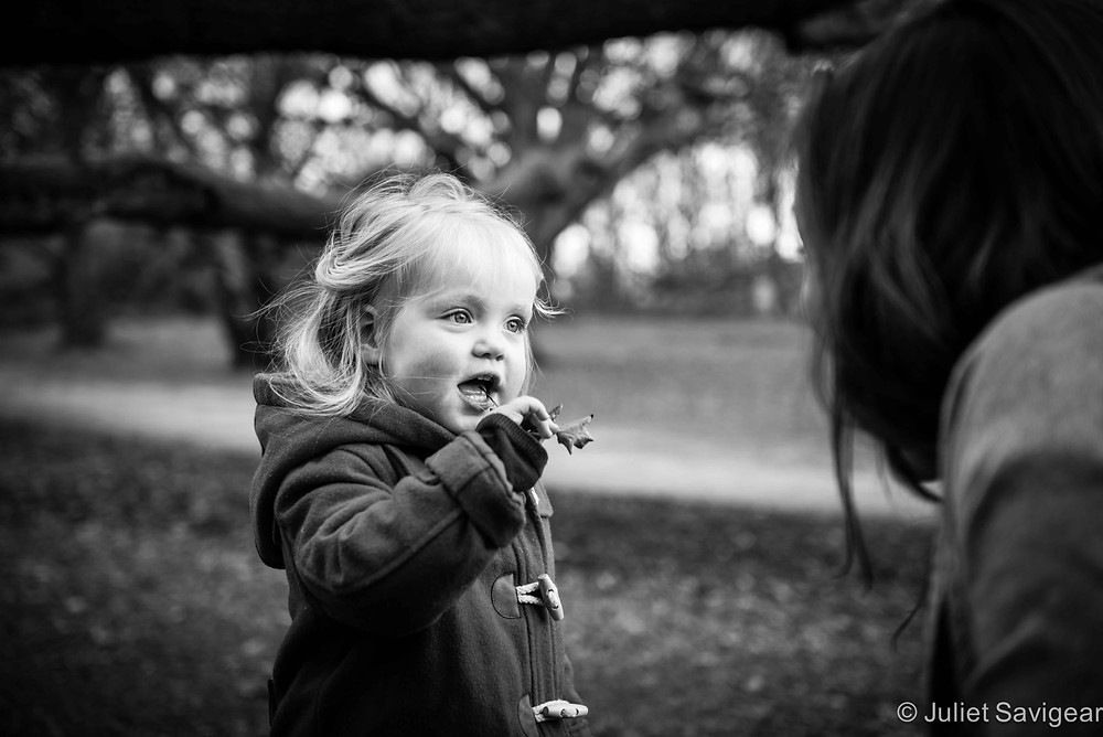 Oak Leaf - Children's Photography, Hampstead Heath