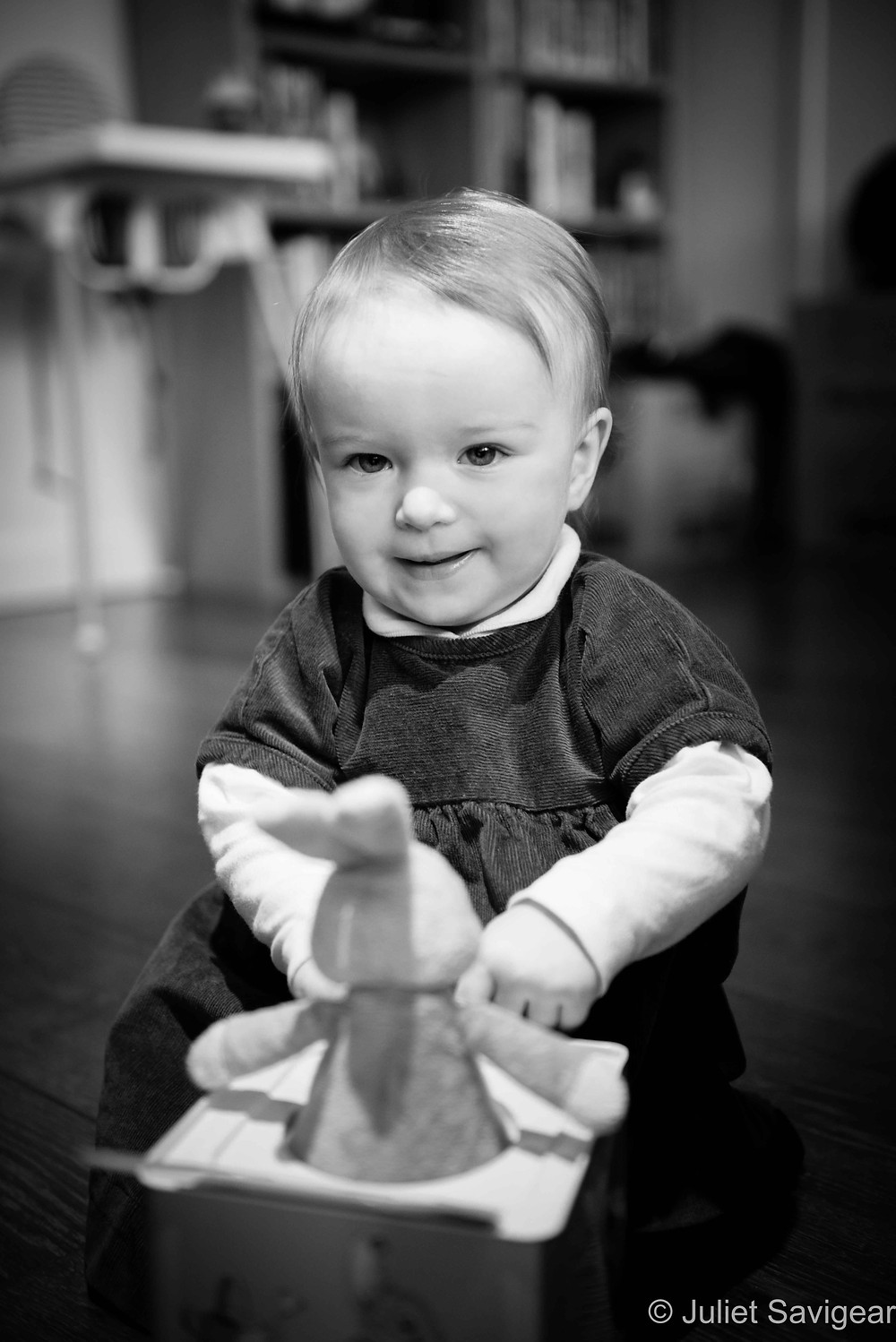 Bunny-In-A Box - Baby Photography, Belsize Park