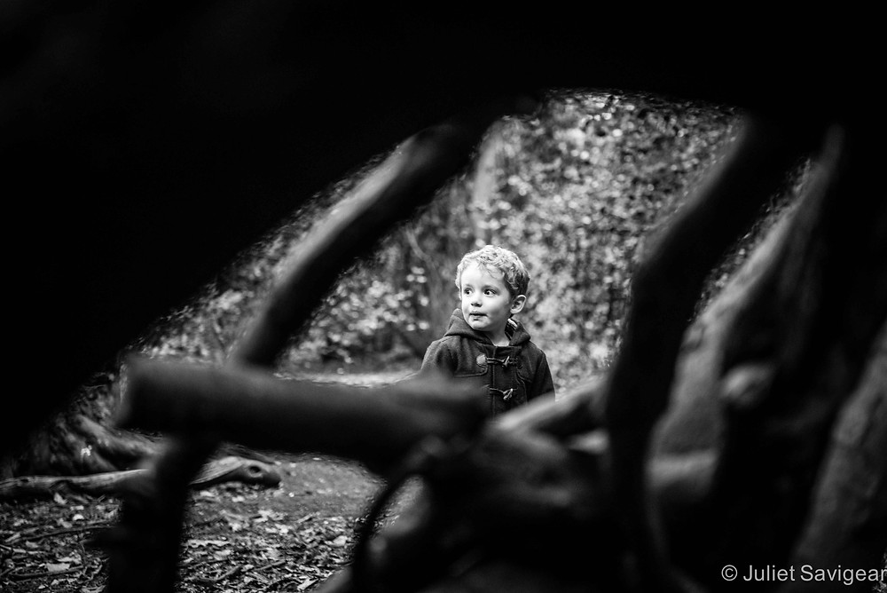 Exploring The Woodlands - Children's Photography, Chiswick