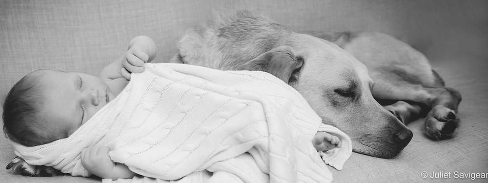Newborn baby & pet dog