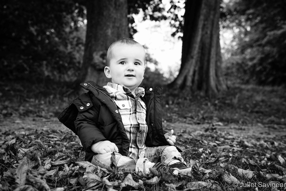 Among The Leaves - Baby Photography, Tottenham