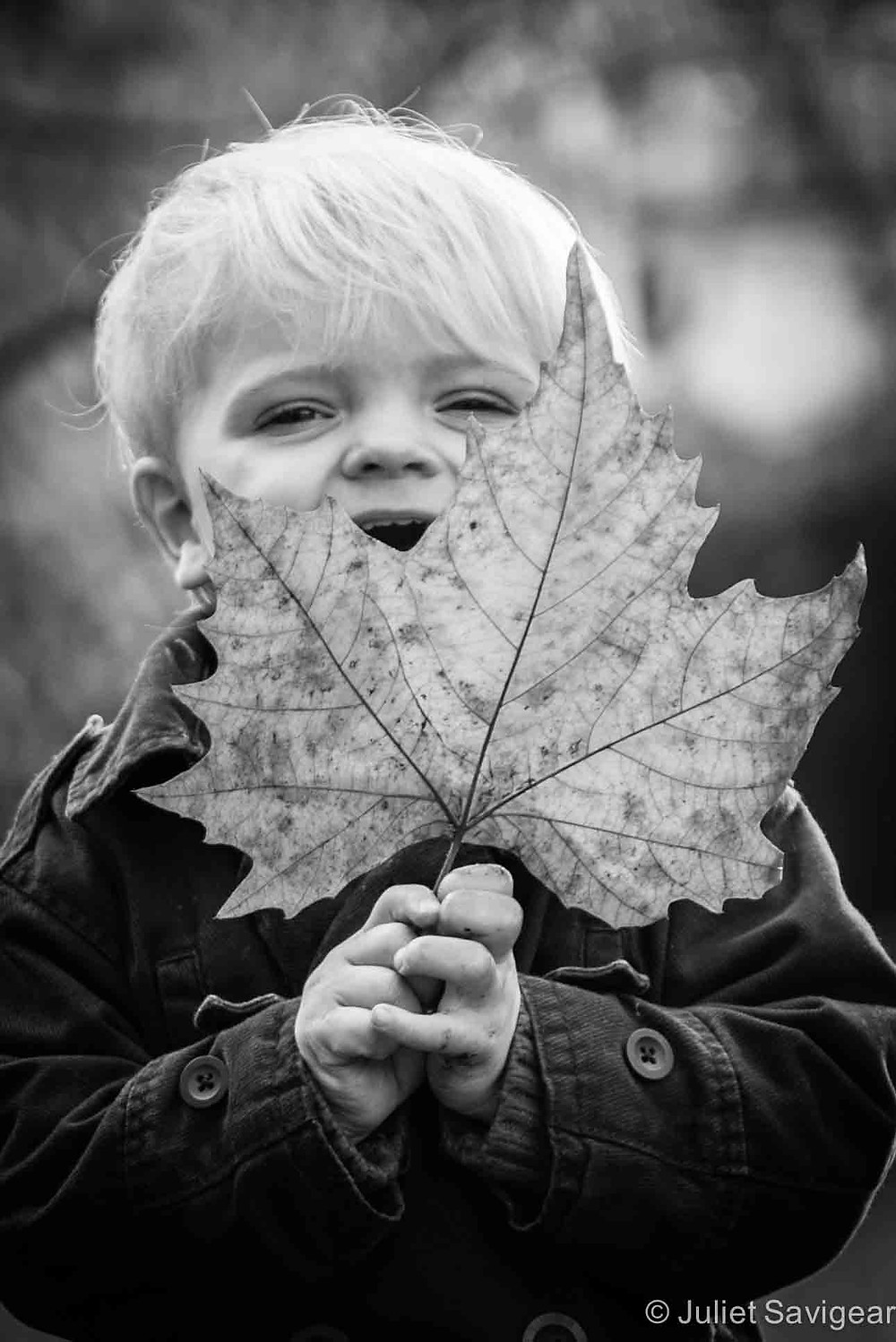 Big Leaf - - Children's Photography, Wandsworth Common