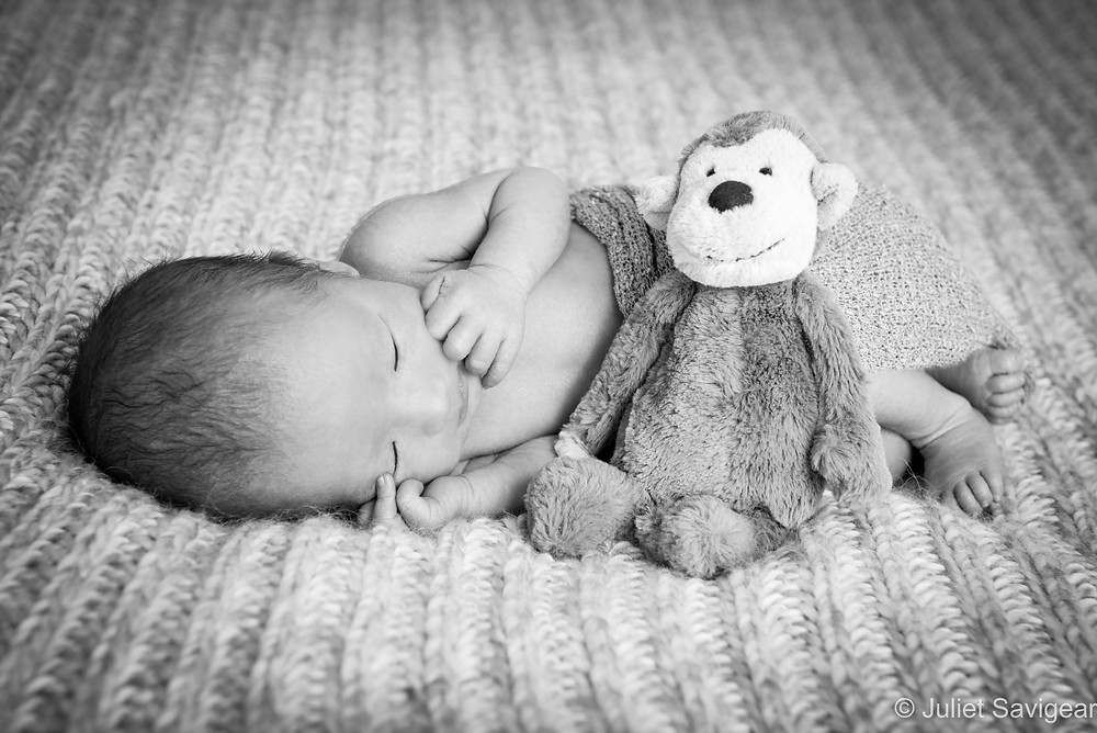 Monkey - Newborn Baby Photography, Victoria, London