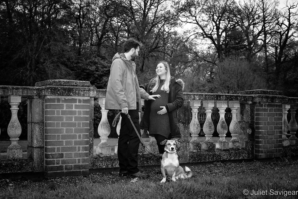 Natural maternity photography with dog