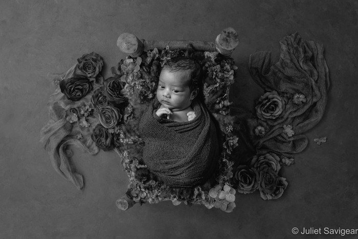 Newborn Baby Photo Shoot - Croydon