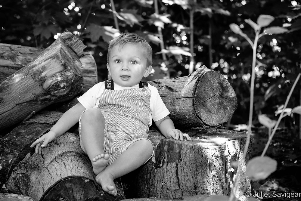 Sat on the log pile