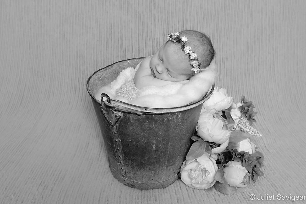 Newborn baby girl in bucket