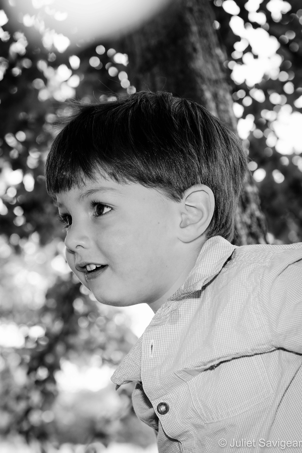 Children's Photography In The Trees