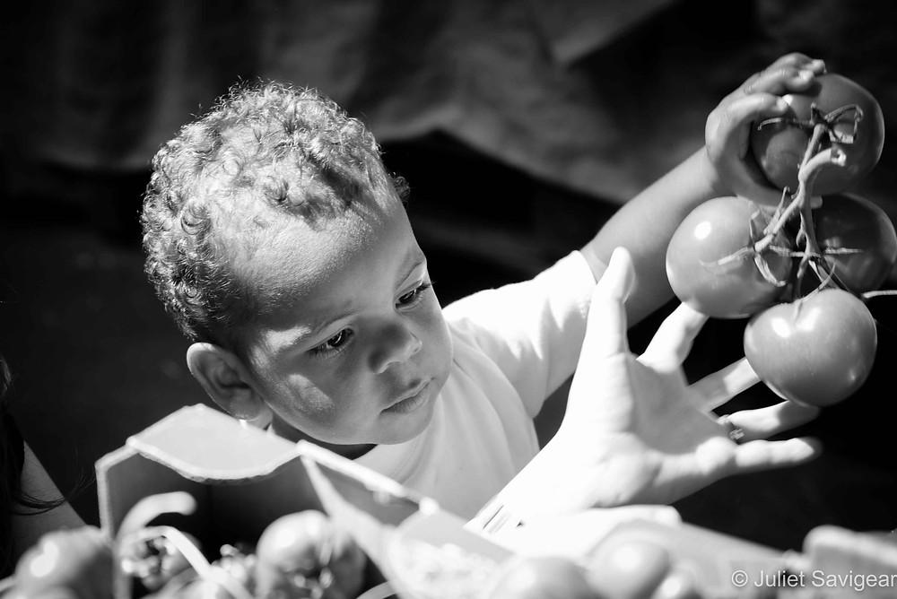 Tomatoes - Children's Photographer, London