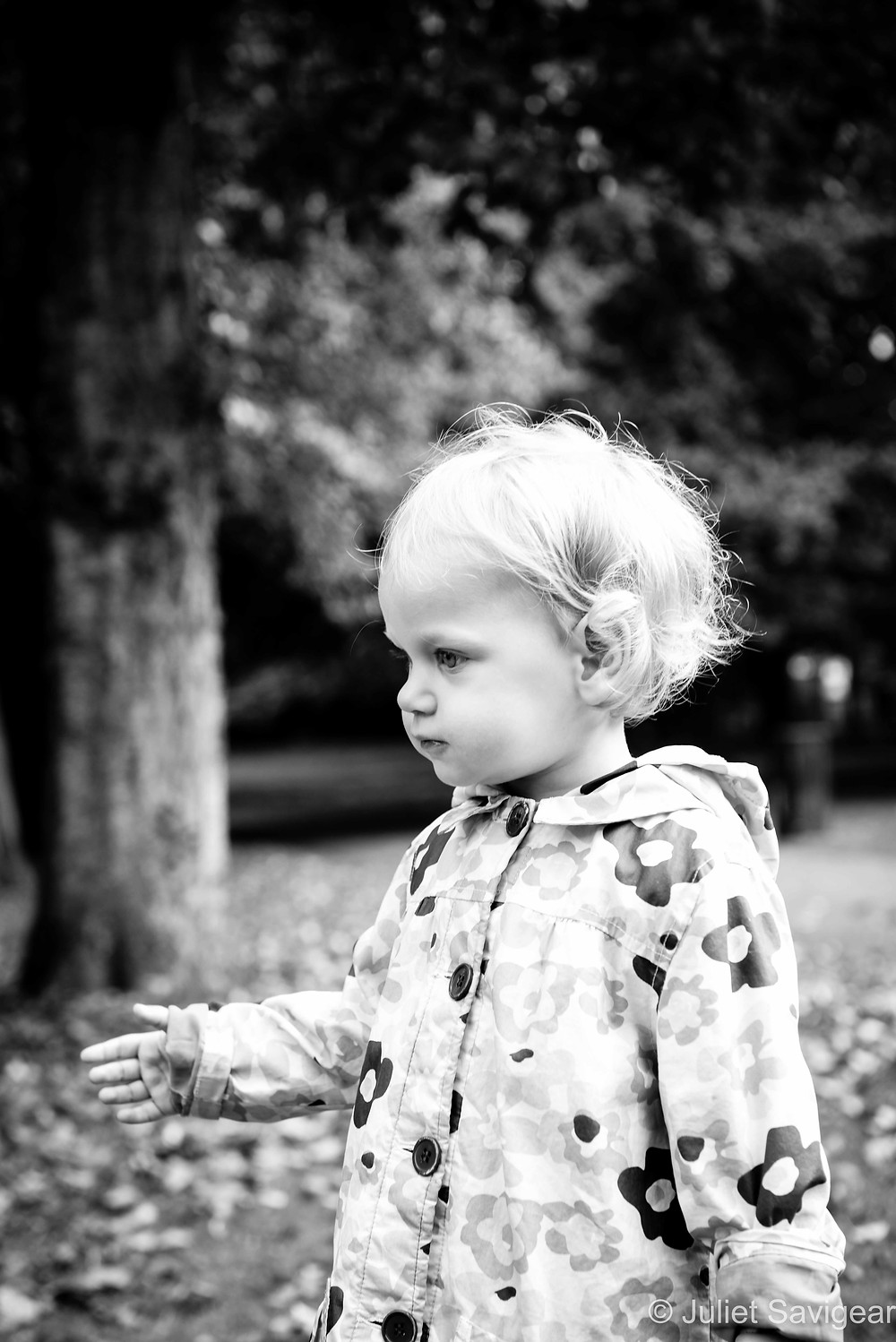 Children's photography in the park
