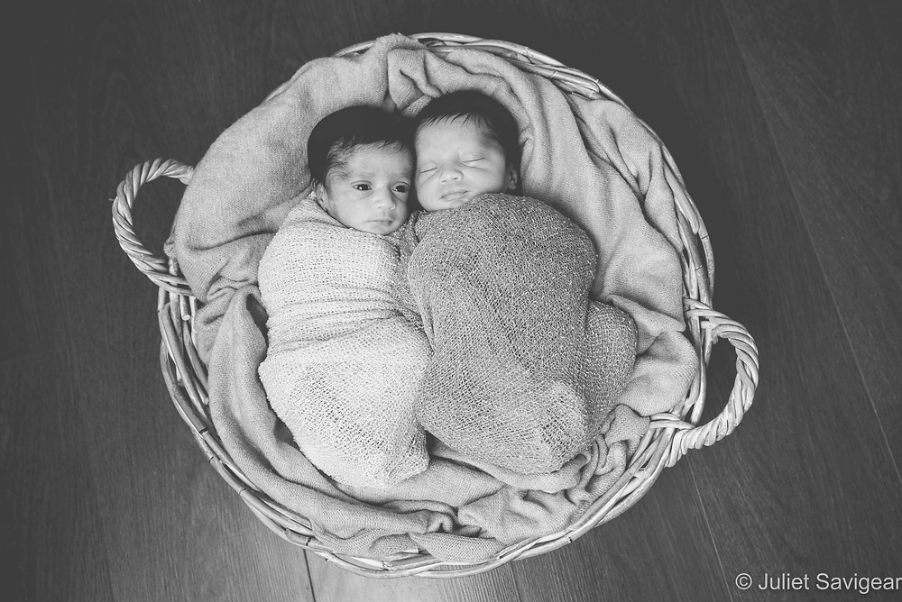Newborn Baby Twins In A Basket