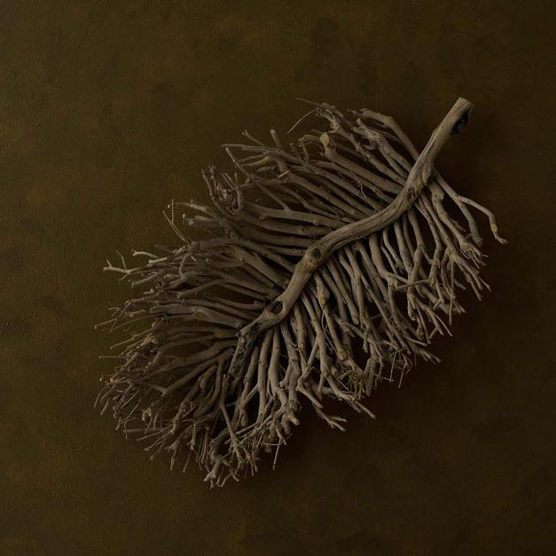 Twig Leaf