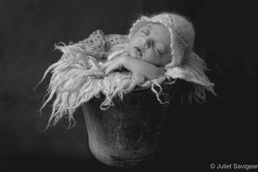 Newborn Baby Girl In A Bucket