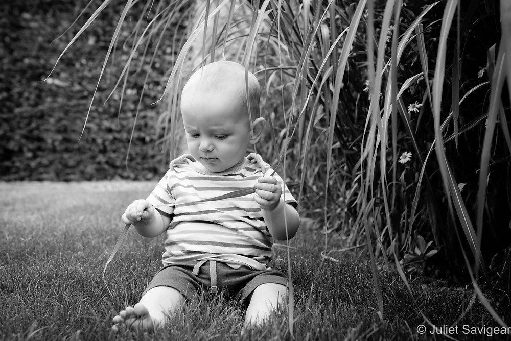 Baby investigates!