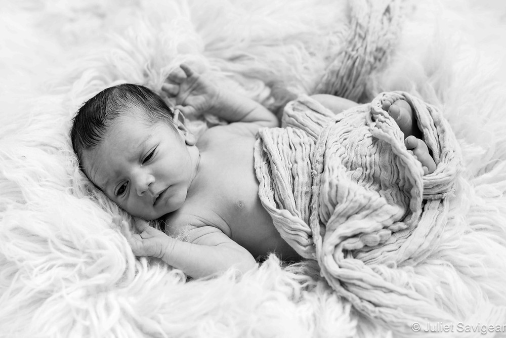 In A Fur Nest - Newborn Baby Photography, Barnes