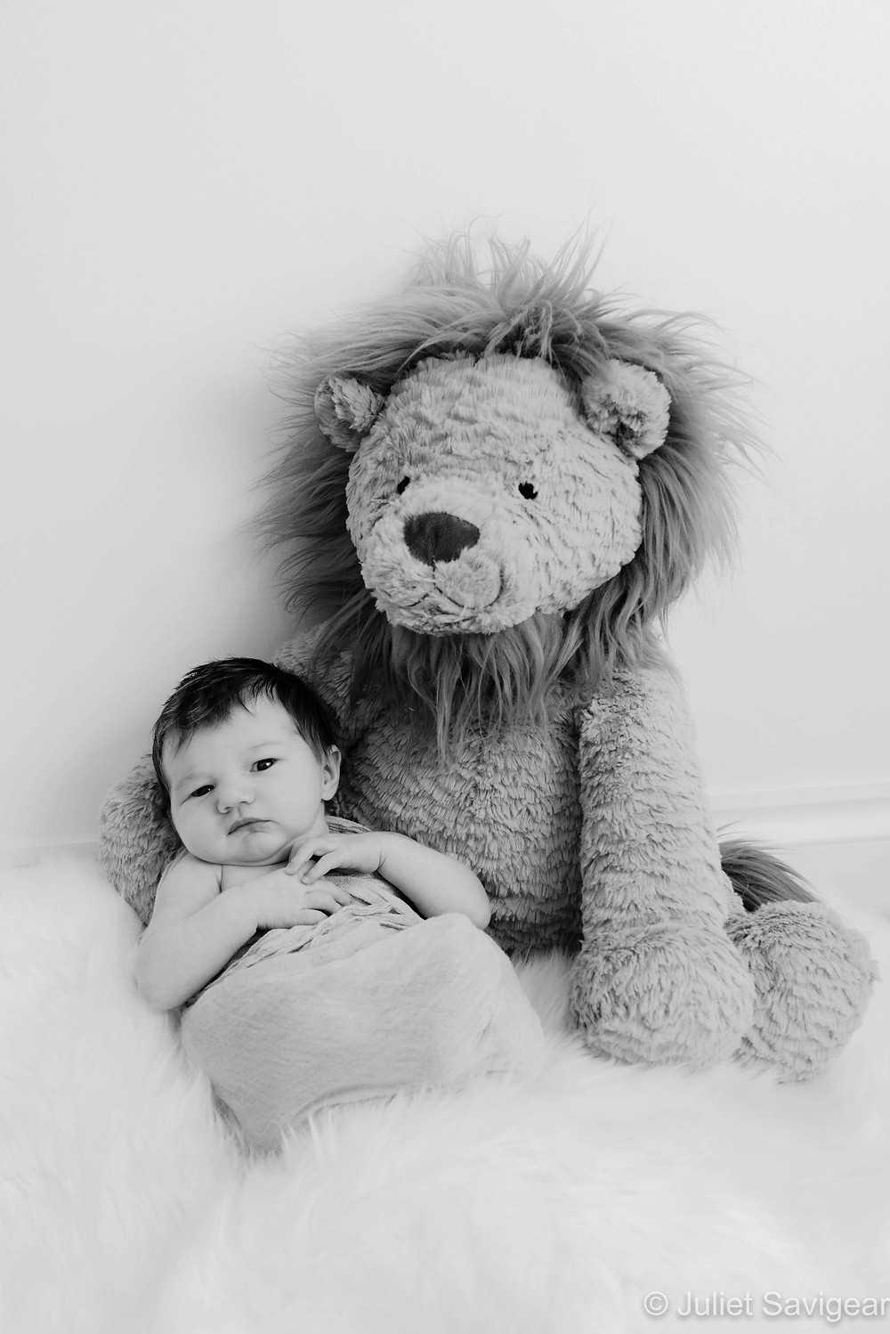 Newborn baby with stuffed toy lion