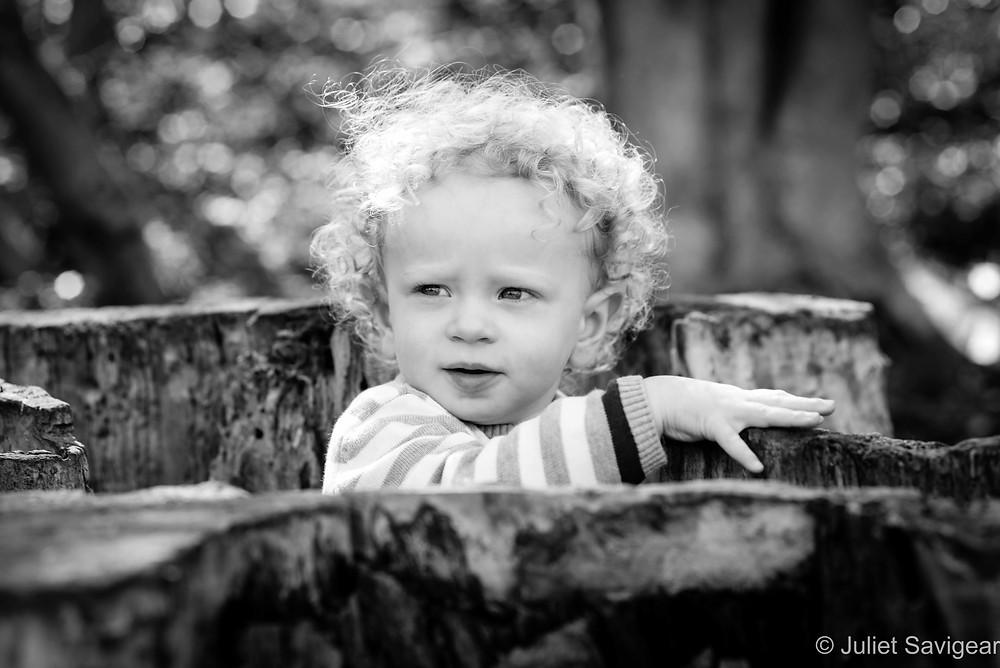 Child in the tree stump