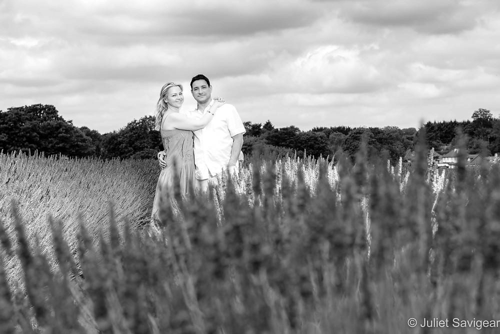 Couple among the lavender bushes