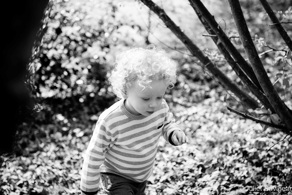 Toddler exploring the woods