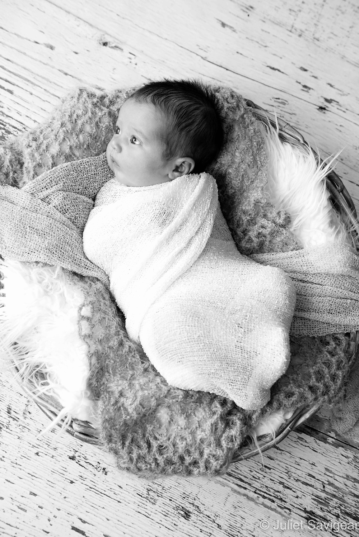 Baby In Basket - Newborn Baby Photography, Balham