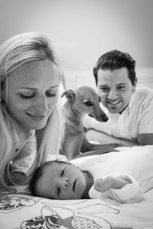 Family Portrait - Family & Pet Photography, Battersea