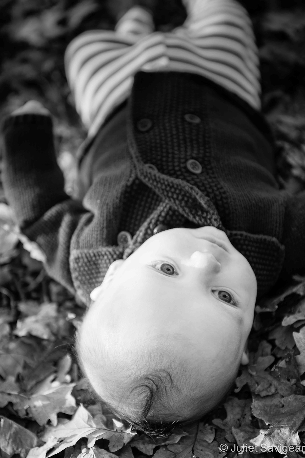 Among The Leaves - Baby photography, Tooting Common
