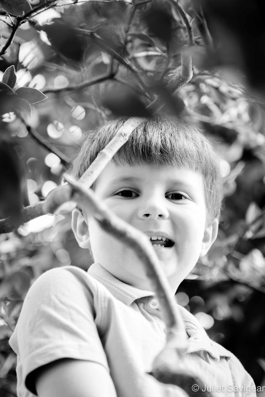 Boy through the leaves