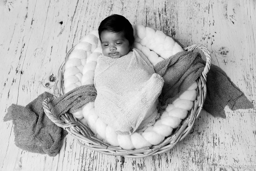 Baby In Basket - Baby Photography, Hammersmith