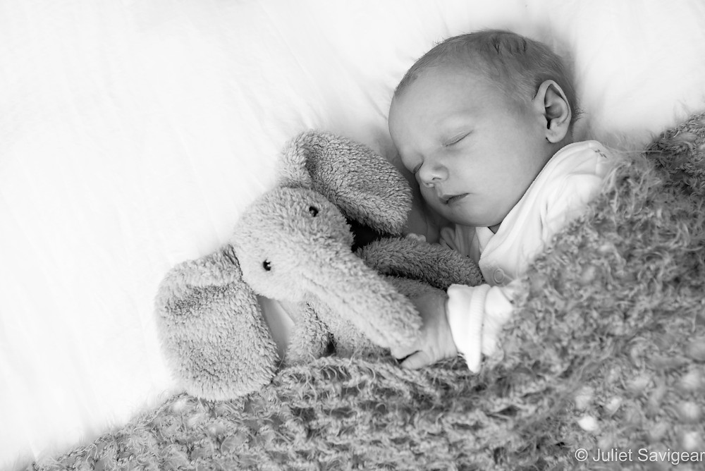 Snuggled With Elephant - Newborn Baby Photographer, Clapham South