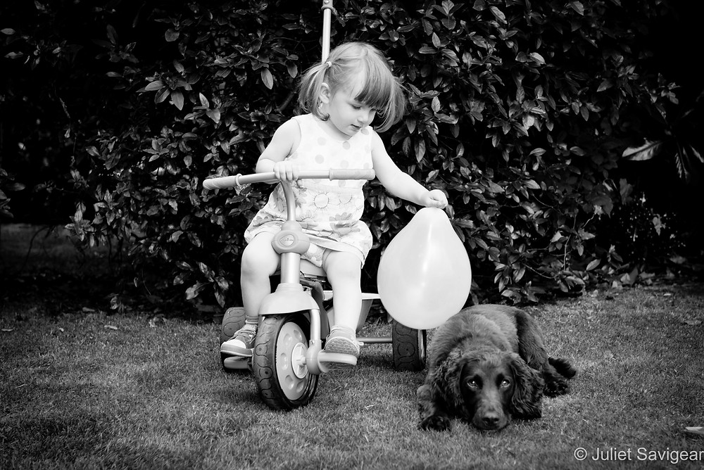 Children's & Pet Photography, Putney