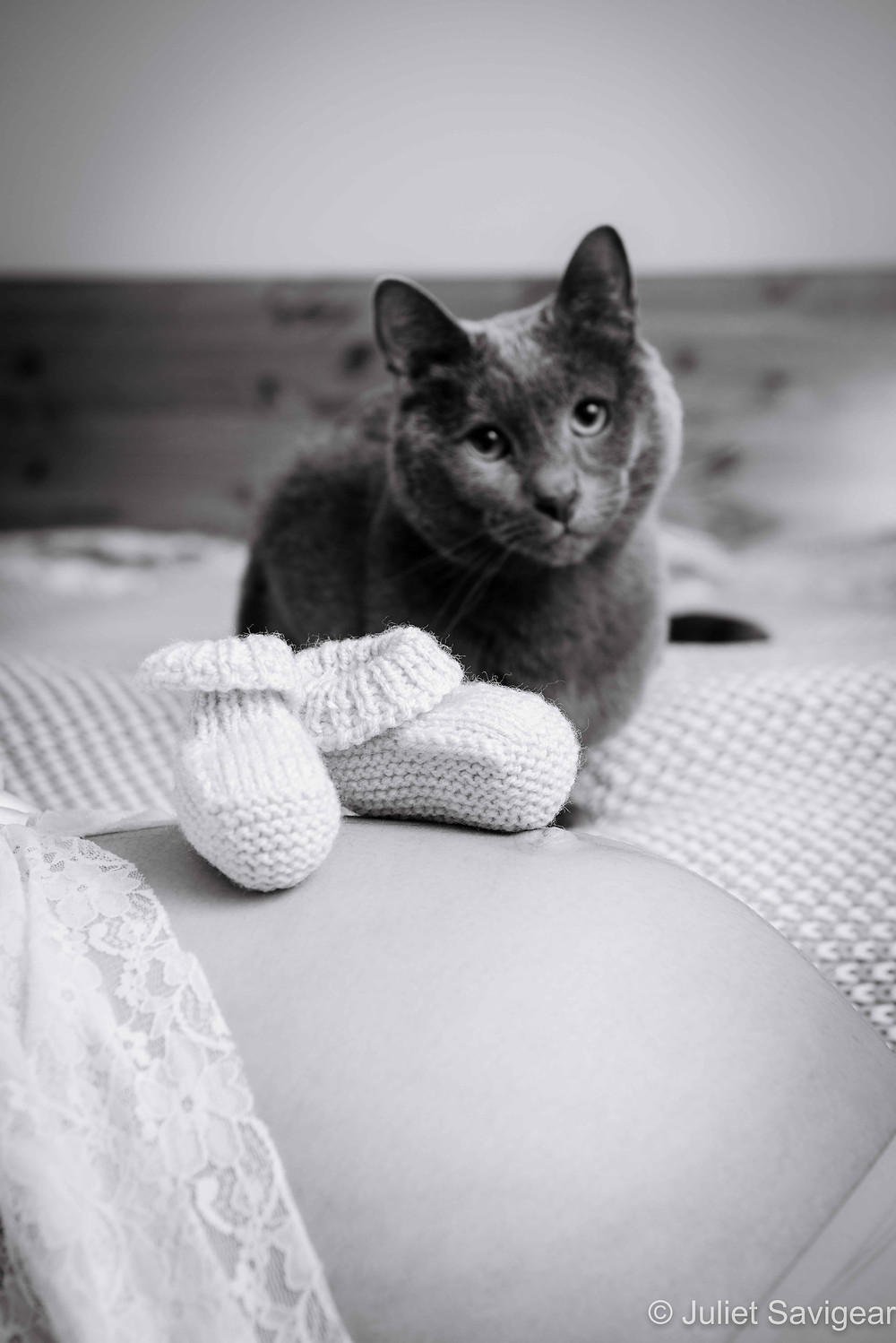 Puss & Bump... With Little Booties