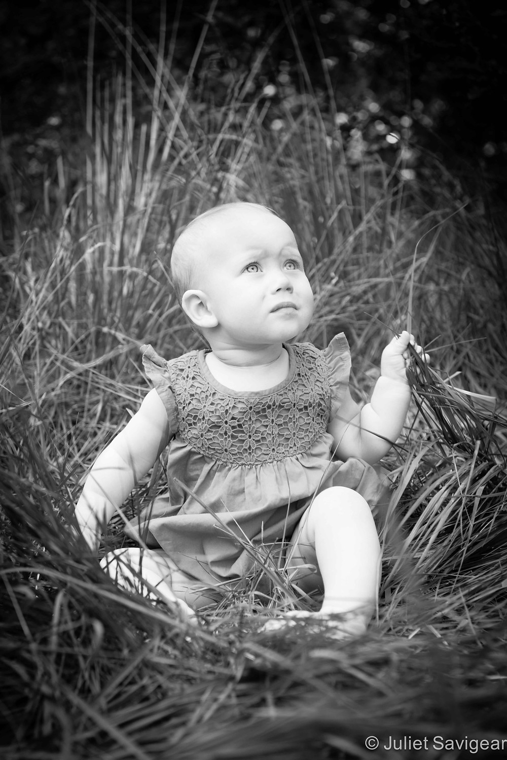 In The Grass - Baby Photography, Wimbledon