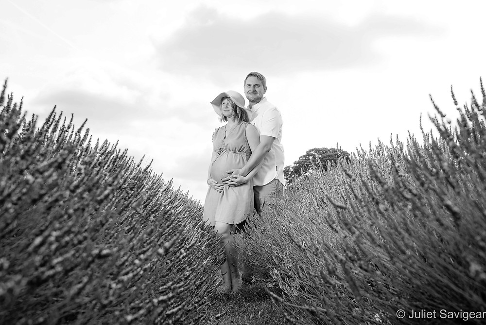 Maternity photography in the lavender fields