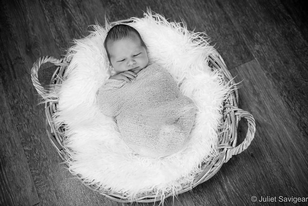 Baby In A Basket - Newborn Baby Photography, Balham
