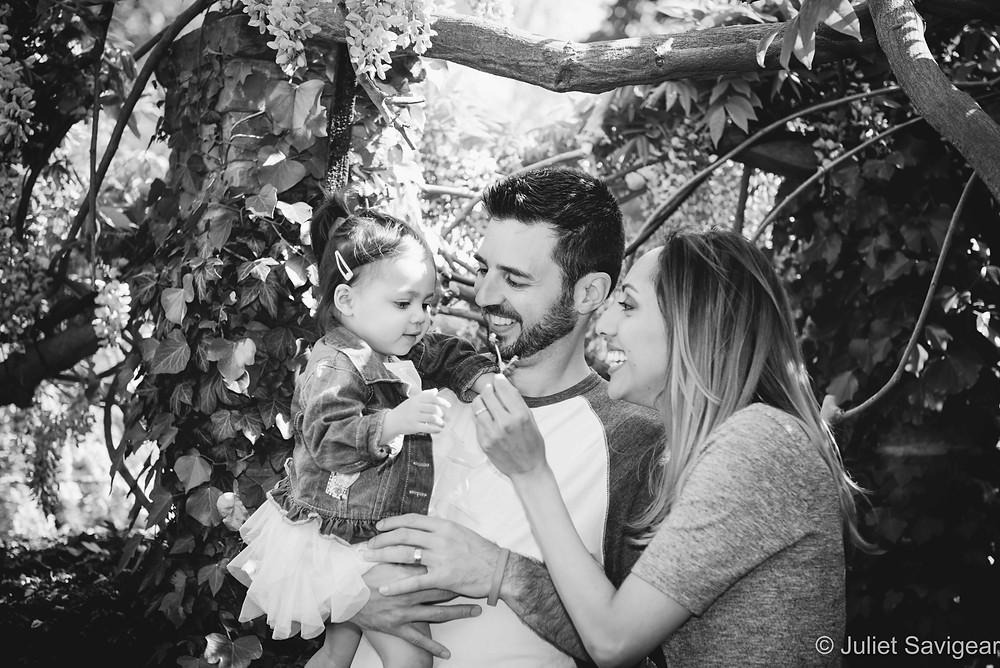 Family Under The Wisteria
