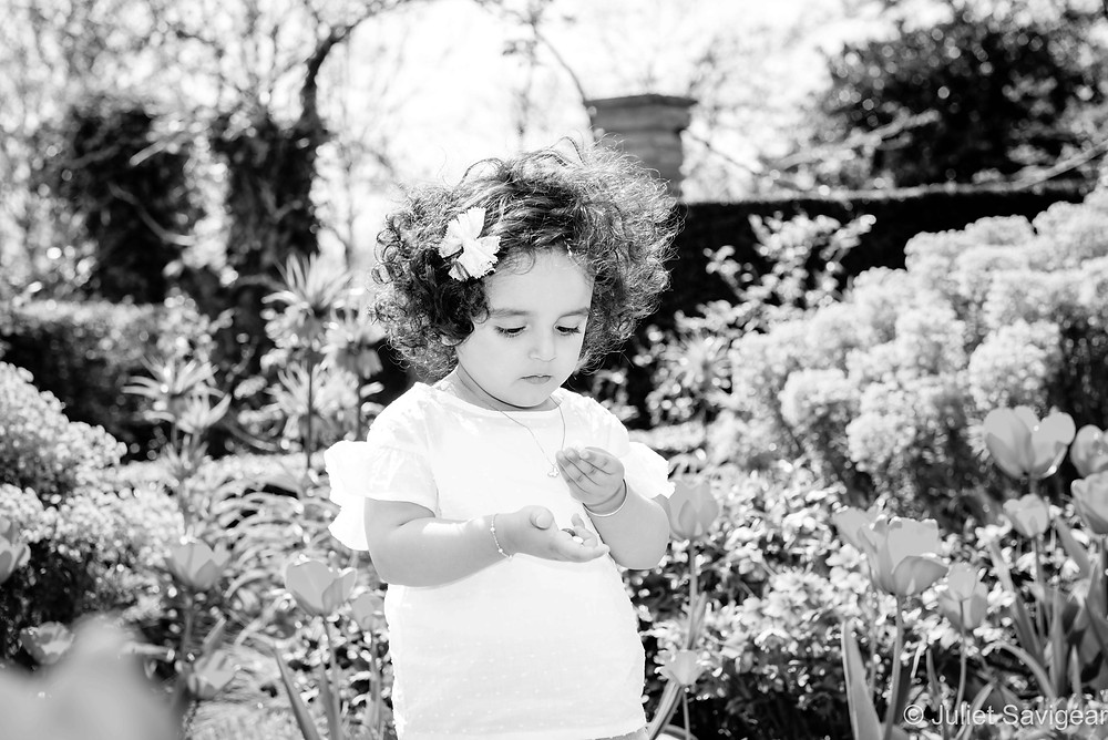 Children's photography among the flowers