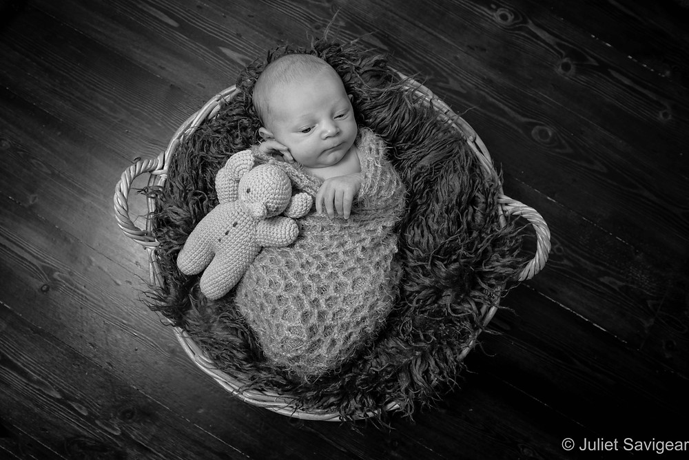 Newborn baby in a basket with toy elephant