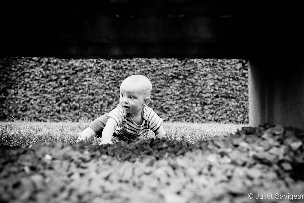 Under the bench