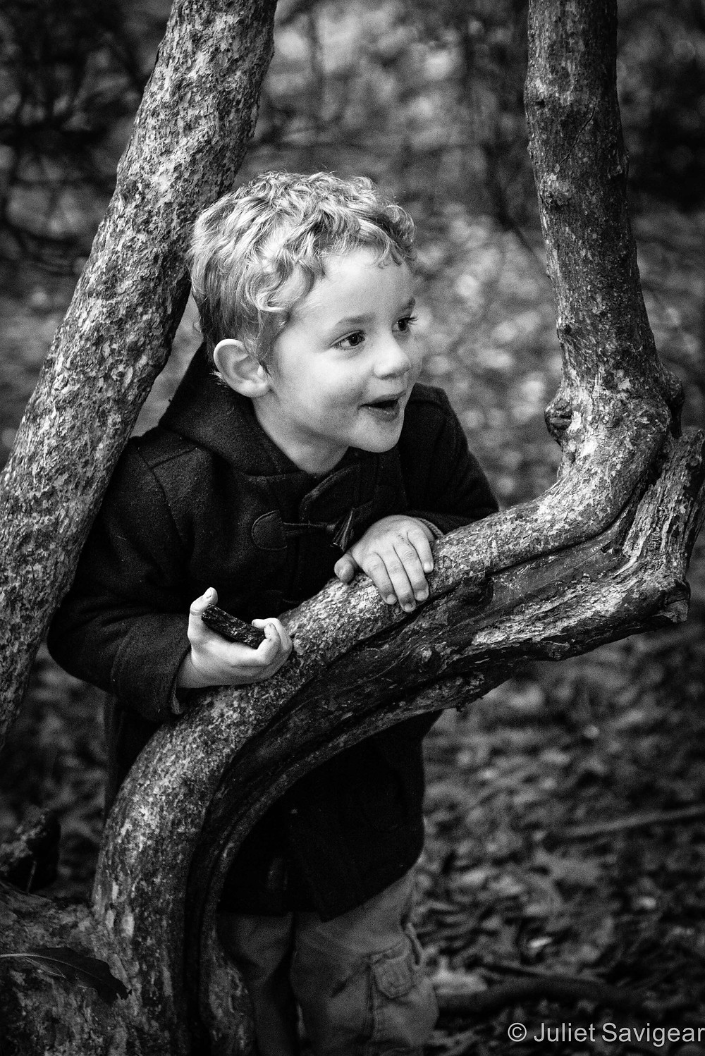 Cheeky Face In The Branches - Children's Photography, Chiswick