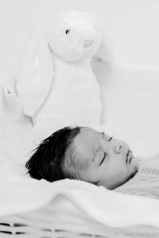 Baby & Bunny Rabbit