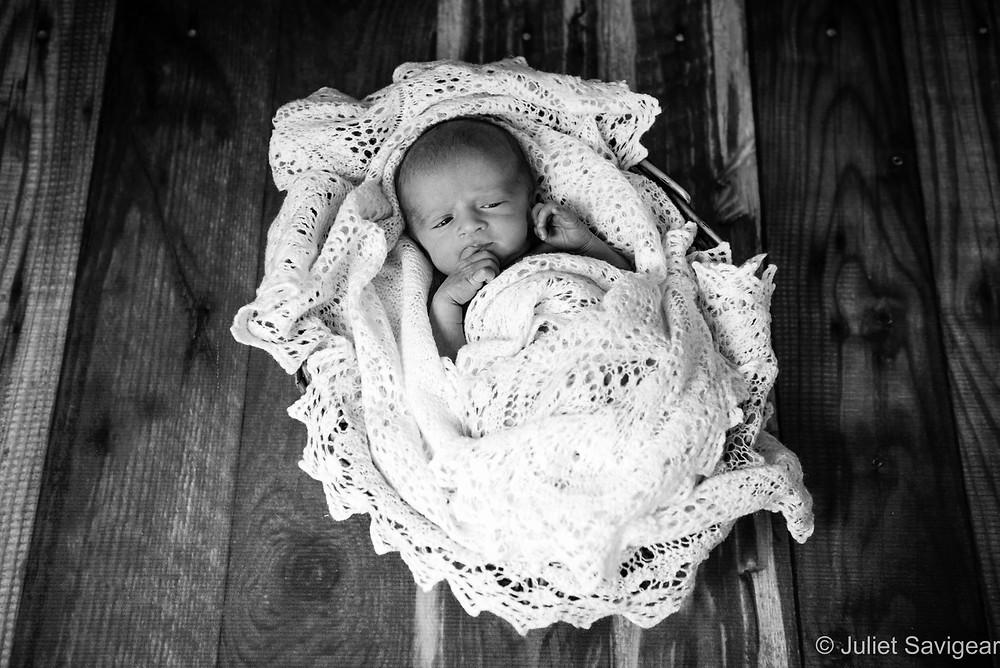 Baby In A Basket - Newborn Baby Photography, Sutton