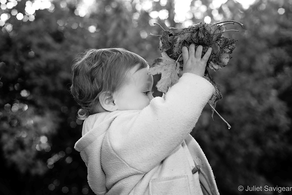 Child with bunch of leaves