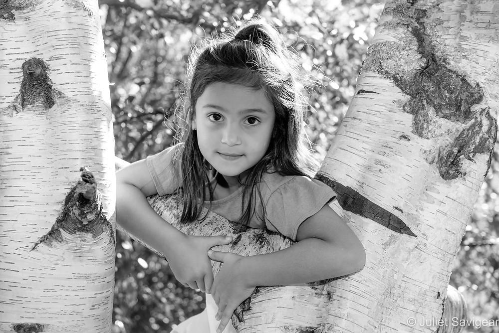 Child in the birch tree branches
