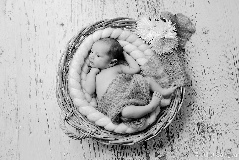 Newborn baby girl in basket with flowers