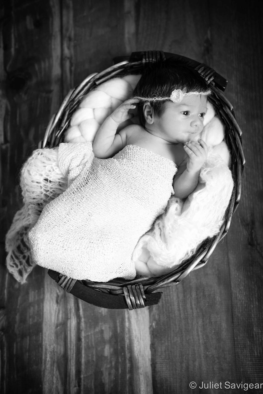 Pretty Girl In Basket - Newborn Baby Photography, Battersea