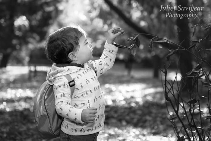 Beautiful Autumn Day For Children's & Family Photo Shoot - Cannizaro Park, Wimbledon