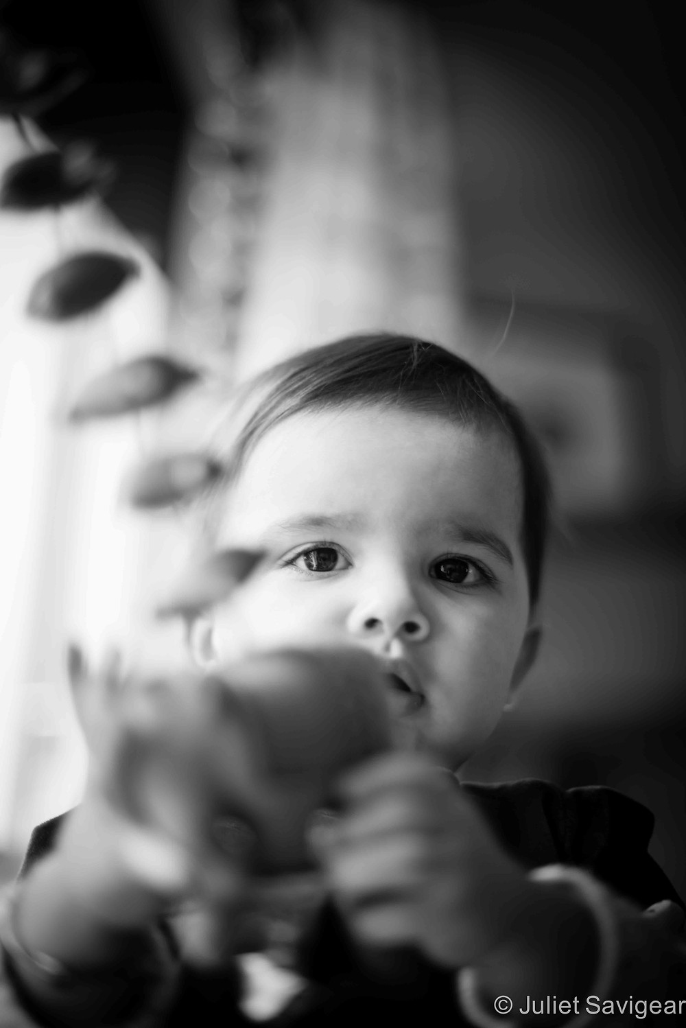 Hanging Toys - Children's Photography, Battersea
