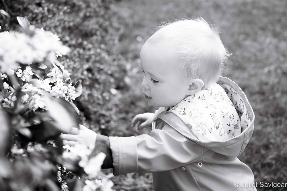 Toddler & Flowers