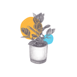 planty.png